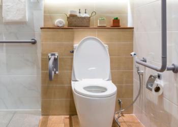 vaso sanitário e barras de apoio para banheiro para idoos